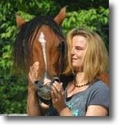 Mariscal – mein Nachruf und Danke an mein wunderbares Pferd