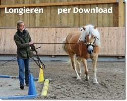 pferdemarkt-2011-03-03-um-2211451