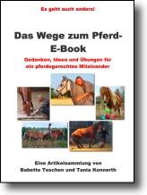 cover_ebook