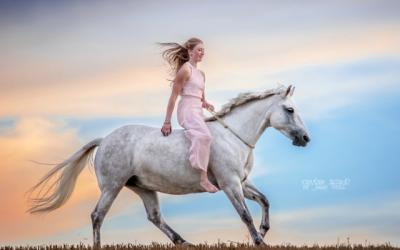 Alina und Moonlight – ein Erfahrungsbericht zum Longenkurs